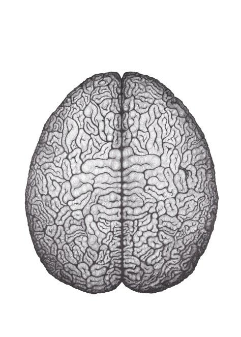 print-brain50x70cm